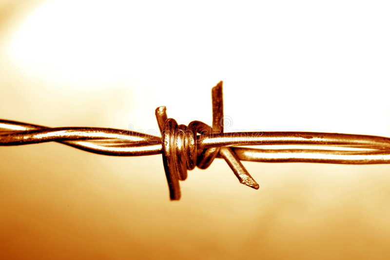 провод колючки стоковые фотографии rf