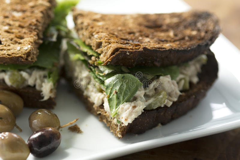 Провозглашанный тост сандвич мяса тунца стоковое фото rf
