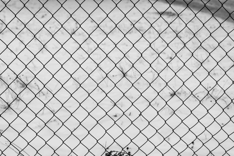 Проволочная изгородь в снеге Предпосылка загородки стоковые фото