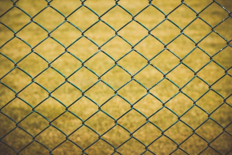Проволочная изгородь с желтой травой на предпосылке стоковые фотографии rf