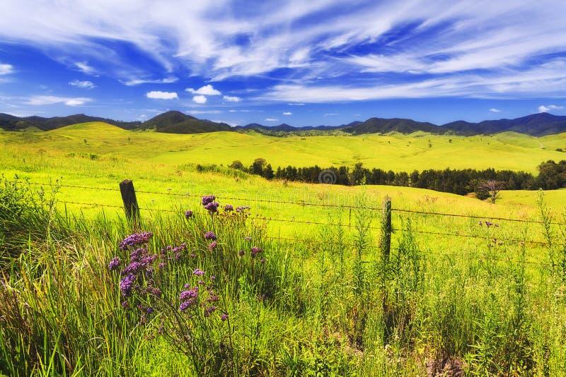 Проволочная изгородь холмов cobark BTops стоковые фотографии rf