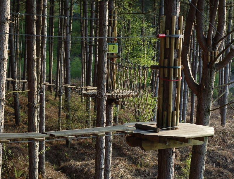 прогулка веревочки стоковое изображение