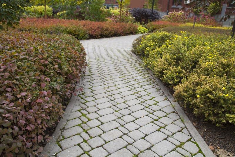 Прогулка в городе Парк сделана из искусственного каменного прямоугольного серого цвета формы, текстурного фона для графического д стоковое изображение rf