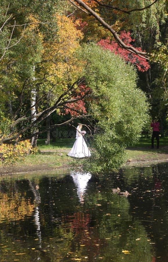 Прогулка в парке осенью отражение в воде Невеста стоковое фото