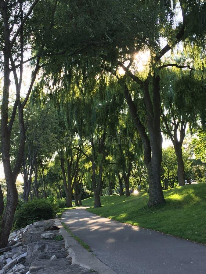 Прогулка в парке Len Форда стоковое фото rf