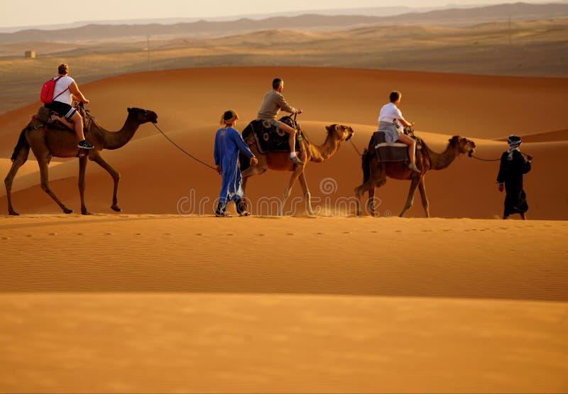 Прогулка в пустыне ЭРГА в Марокко стоковое фото rf