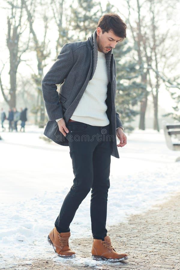 Прогулка зимы стоковые изображения
