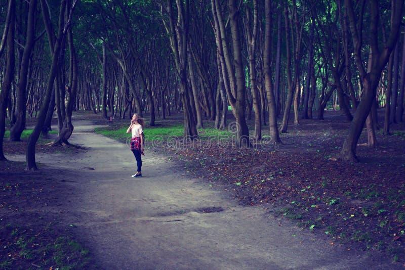 прогулка парка девушка сновидений Подкрашиванное фото стоковое изображение rf