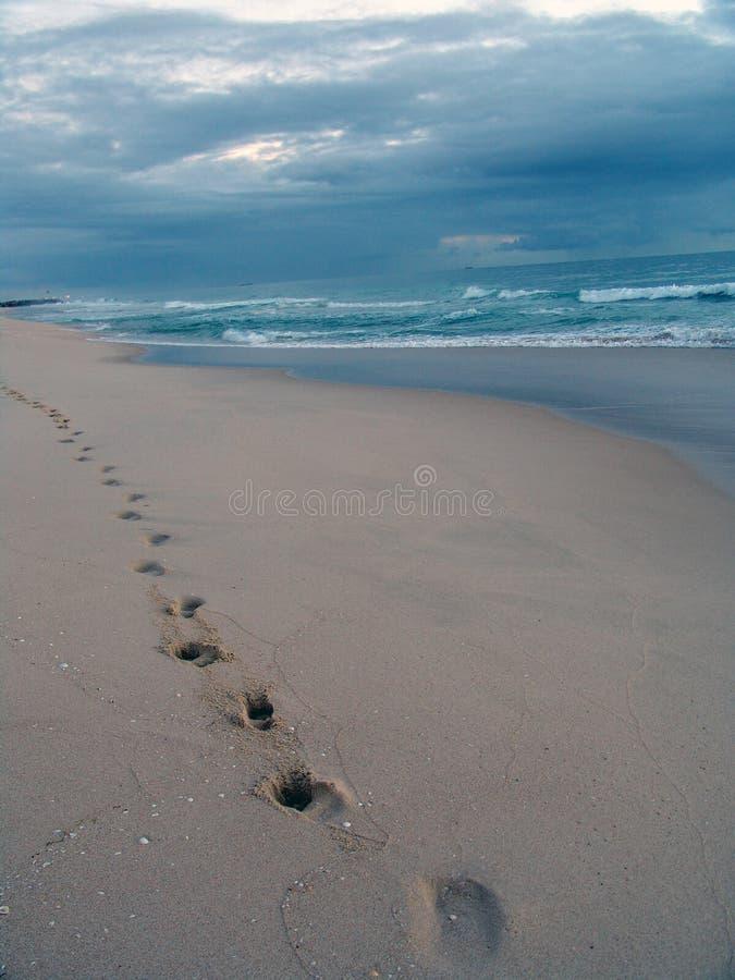 прогулка пляжа стоковая фотография