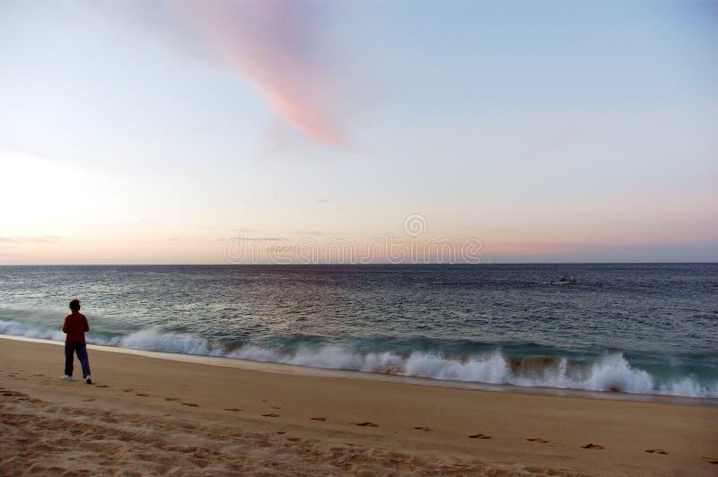 Прогулка силы утра на пляже стоковые изображения rf