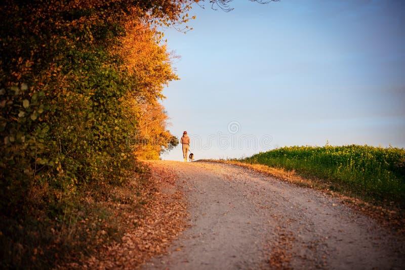 Прогулка с собакой, женщиной и ее любимцем идя через ландшафт осени стоковые фото