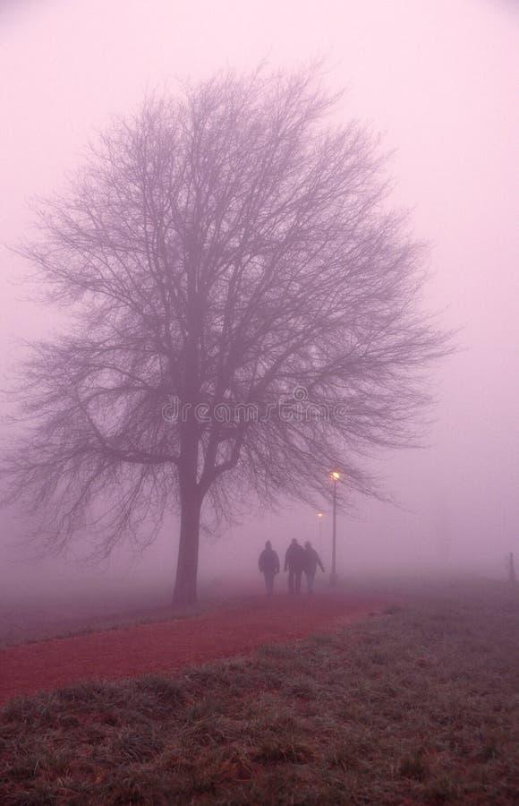 прогулка утра стоковое фото