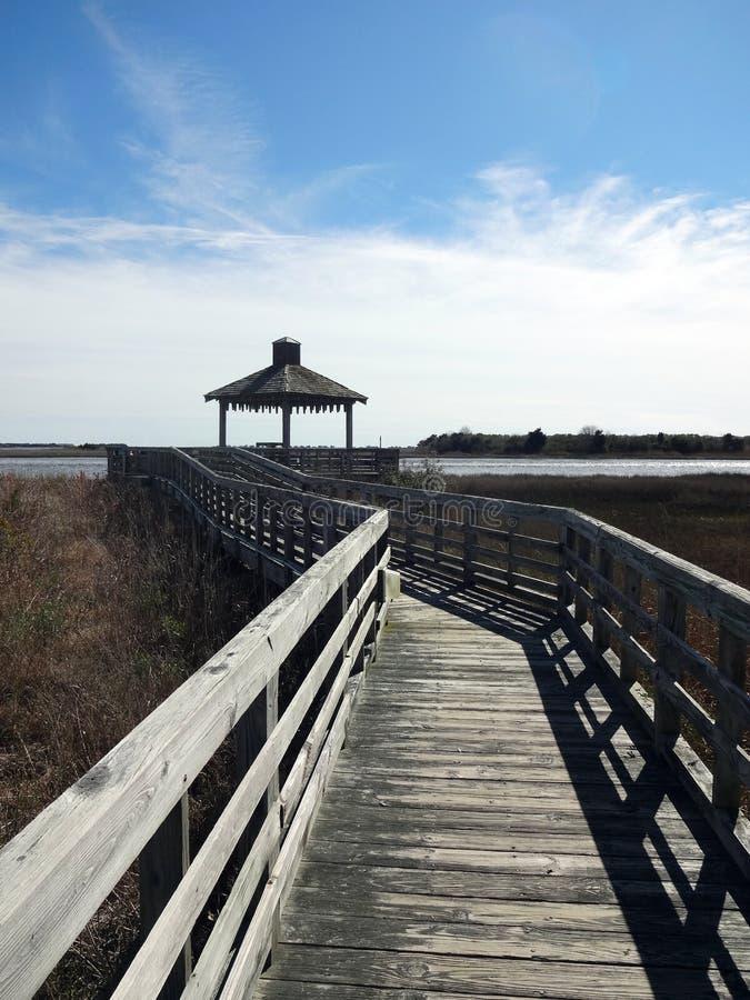 Прогулка болота в Southport, Северной Каролине стоковые фото