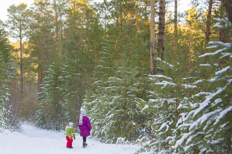 Прогулка детей в fairy лесе зимы стоковые фотографии rf