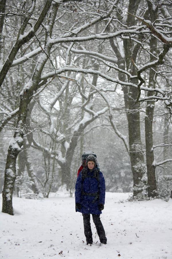 Прогулка зимы стоковые фотографии rf