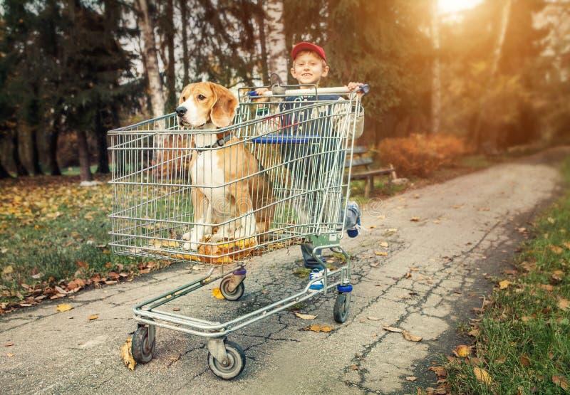Прогулка мальчика с собакой в следе покупок стоковое фото