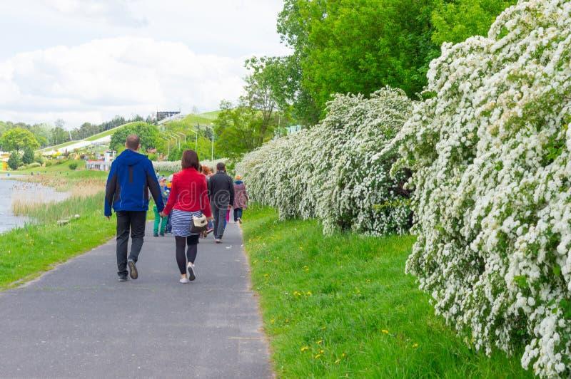 Download Прогулка парка весны редакционное стоковое фото. изображение насчитывающей парк - 40584313