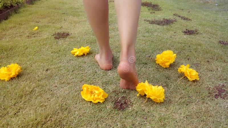 Прогулка barefoot на траве стоковые фото