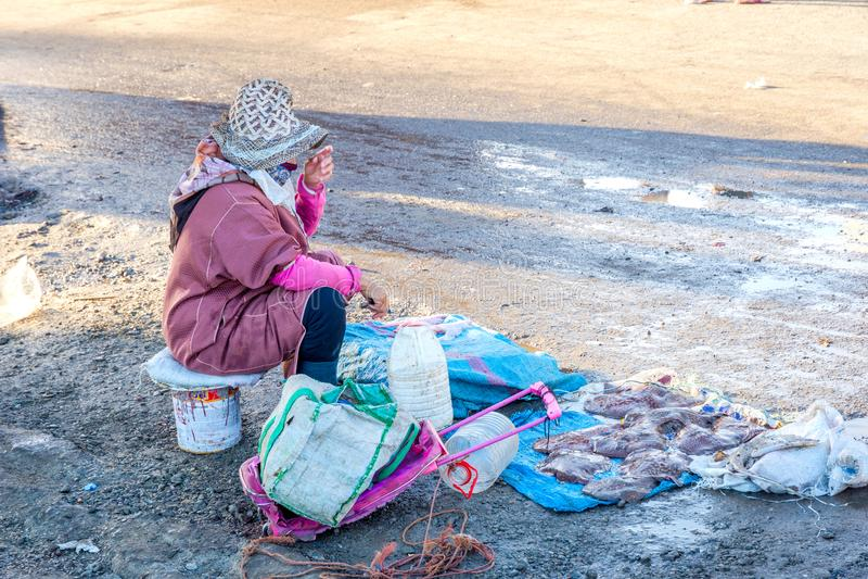 Продавать рыб в порте Essaouira стоковые фото