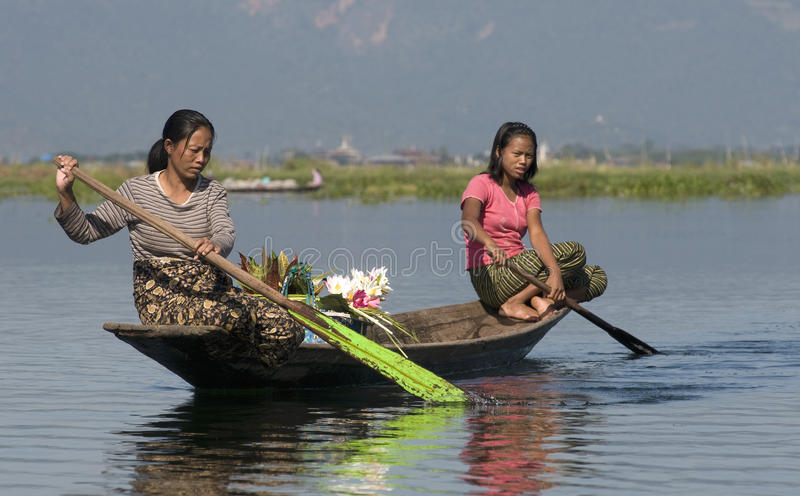 продавецы озера inle цветка стоковые фотографии rf
