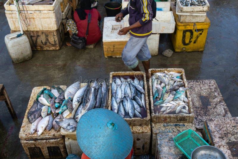 Продавцы рыбы в рыбном базаре Бали jimbaran Он продает различные типы свежих рыб которые как раз улавливали стоковые фото