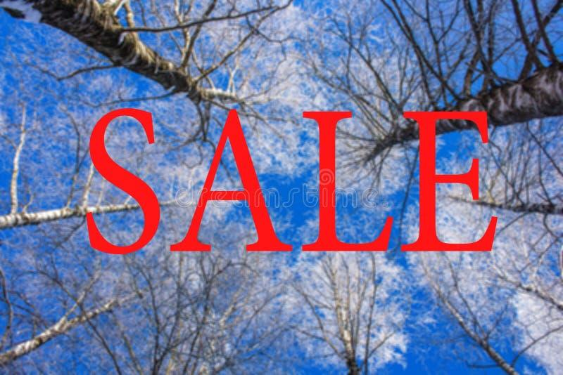ПРОДАЖА надписи на фото зимы рекламировать рабаты стоковая фотография