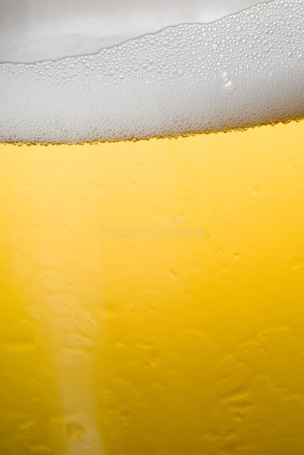 проект пива стоковое изображение rf