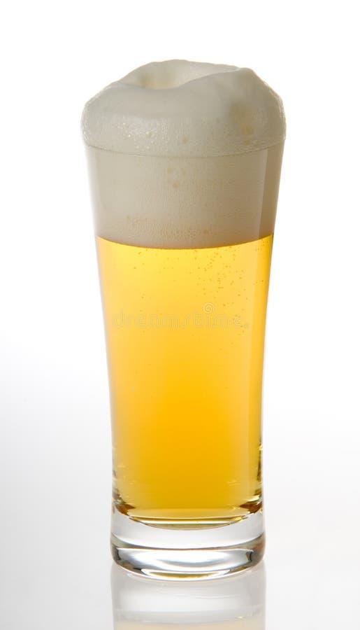 проект пива стоковые изображения rf