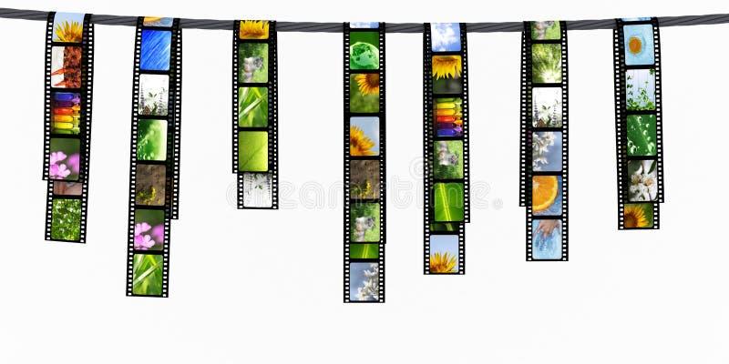 прокладки пленки бесплатная иллюстрация