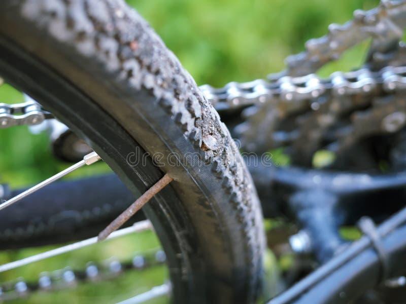 Прокол велосипеда, заменяя камеру на велосипеде, отверстие в колесе стоковая фотография