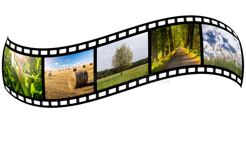 Прокладка фильма с фото лета иллюстрация штока