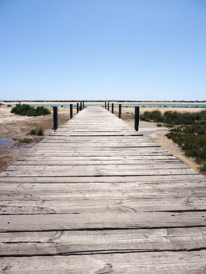 Променад вниз к португальскому пляжу стоковое изображение rf