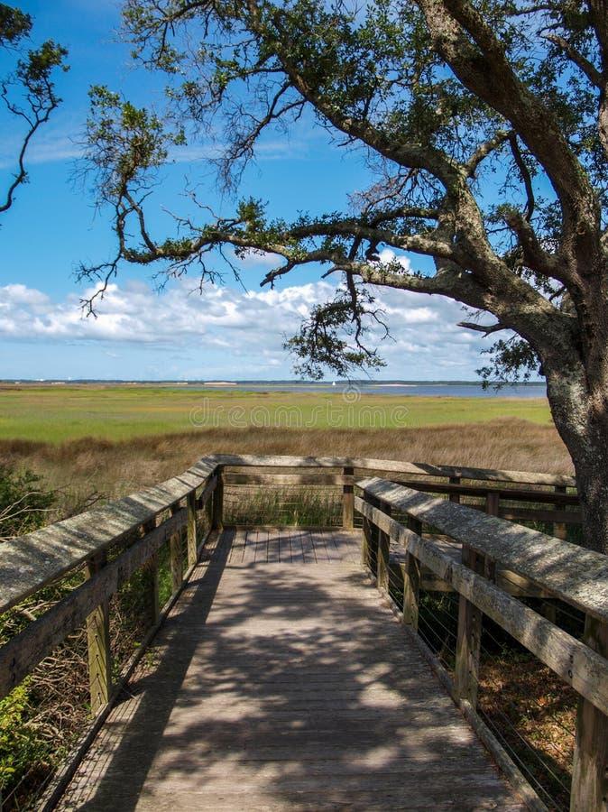 Променад над болотом на исторической достопримечательности государства Fisher форта стоковые изображения