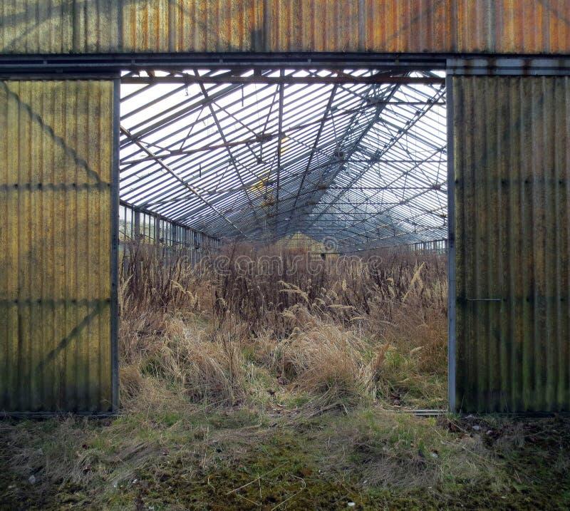 Проницательность в покинутый садовничать стоковые фото