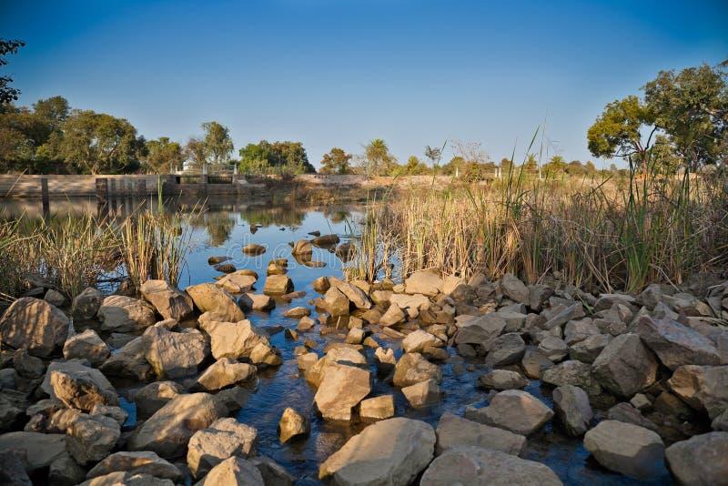 пропуская вода природы стоковое изображение