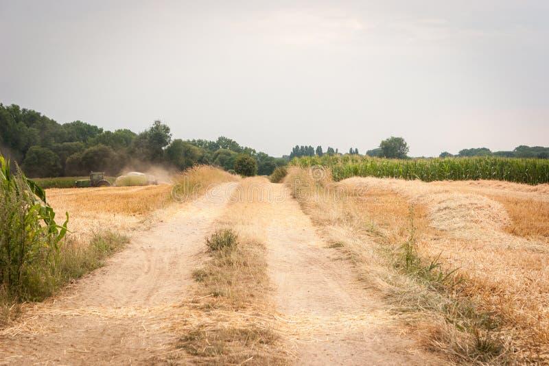 Проселочная дорога в сборе стоковые изображения rf