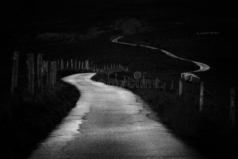Проселочная дорога замотки в черно-белом Добавленный шум стоковые изображения rf