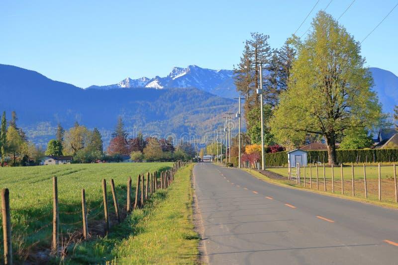 Проселочная дорога и красивая сценарная долина стоковое изображение rf