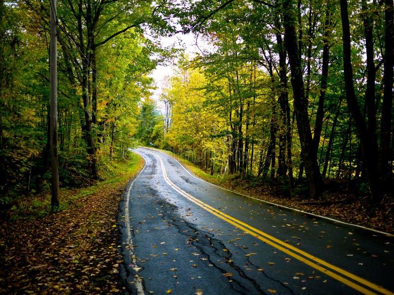 проселочная дорога осени стоковое фото rf