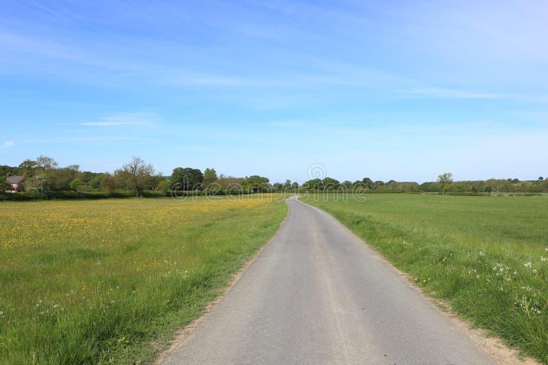 Проселочная дорога через луга wildflower в ландшафте весеннего времени, стоковые фото