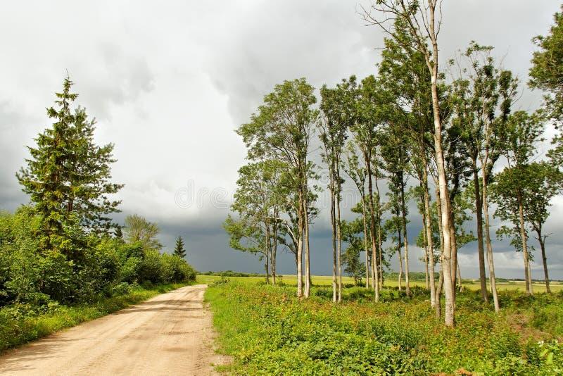 Проселочная дорога. стоковое изображение rf