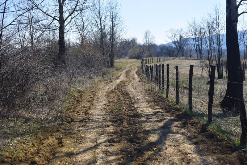 Проселочная дорога Forgoten с колючей проволокой обнести забором красивый солнечный весенний день стоковая фотография