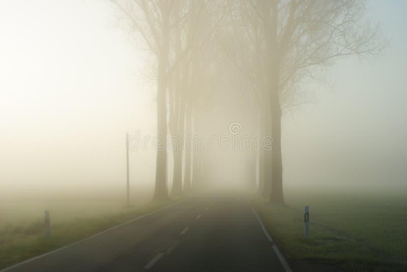 Проселочная дорога в бесконечном сельском ландшафте с строкой чуть-чуть деревьев стоковое фото rf