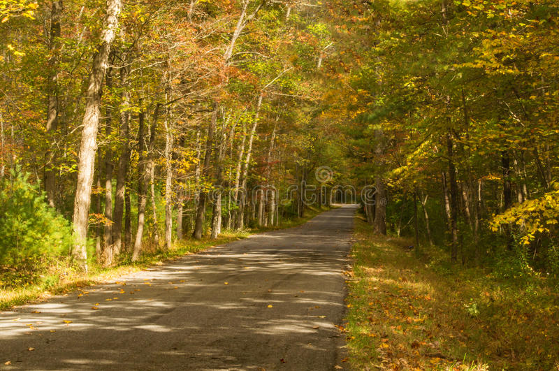 Проселочная дорога в Rockbridge County, Вирджинии, США стоковые изображения