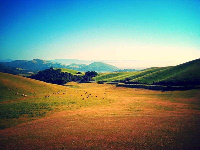 Проселочная дорога Калифорнии стоковое изображение rf