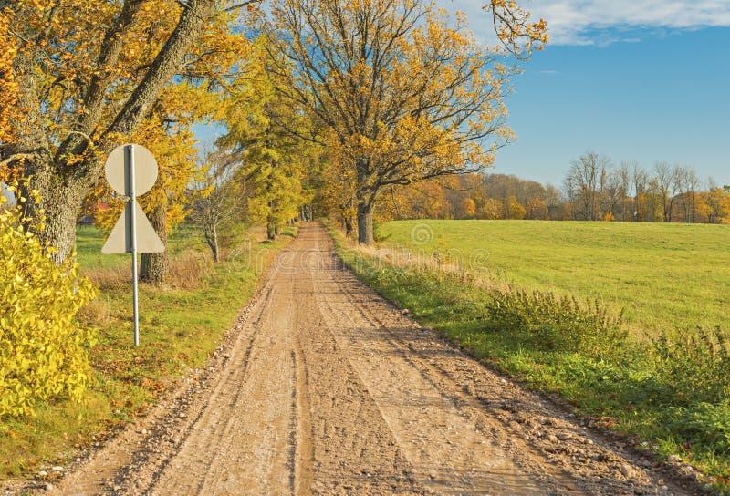 Проселочная дорога осени, Латвия стоковое изображение rf