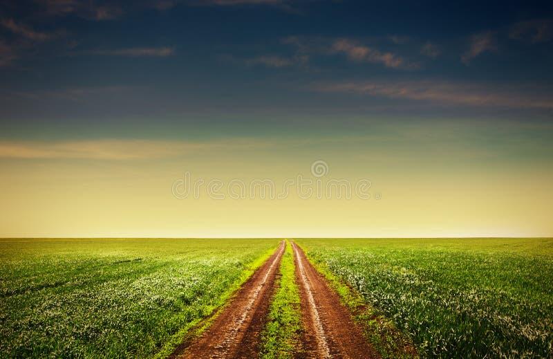 Download Проселочная дорога через поля Стоковое Фото - изображение насчитывающей зерно, страна: 41660546