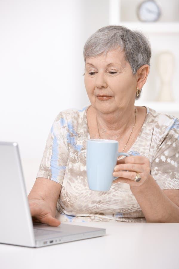 просматривая женщина старшия интернета стоковое фото rf