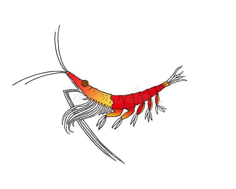 Простая иллюстрация антартического криля стоковые фото