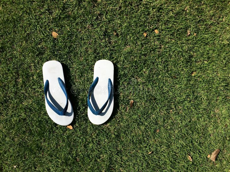 Простая сандалия на траве стоковые изображения rf